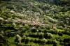 gorani 2009 thumbnail