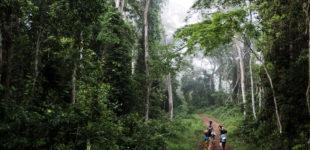 liberia-refugies-ivoiriens-0311-9933hd